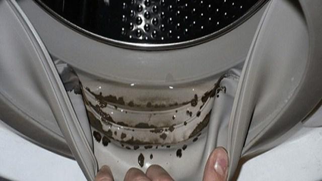 Come pulire la muffa dalla guarnizione della lavatrice usando 2 ...