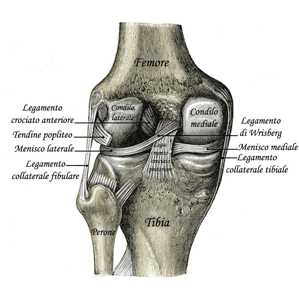 elimina i dolori articolari