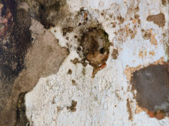 rimuovere l'umidità dalle pareti