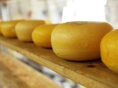 benefici del formaggio