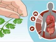 combatte l'anemia