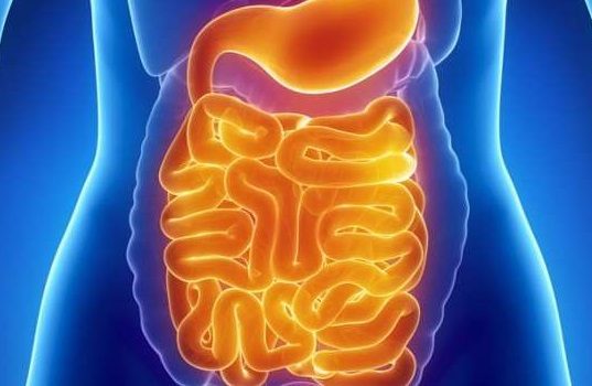 muco nell'intestino