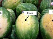 metodo per scegliere l'anguria