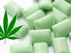 gomma da masticare alla cannabis