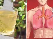 catarro nei polmoni